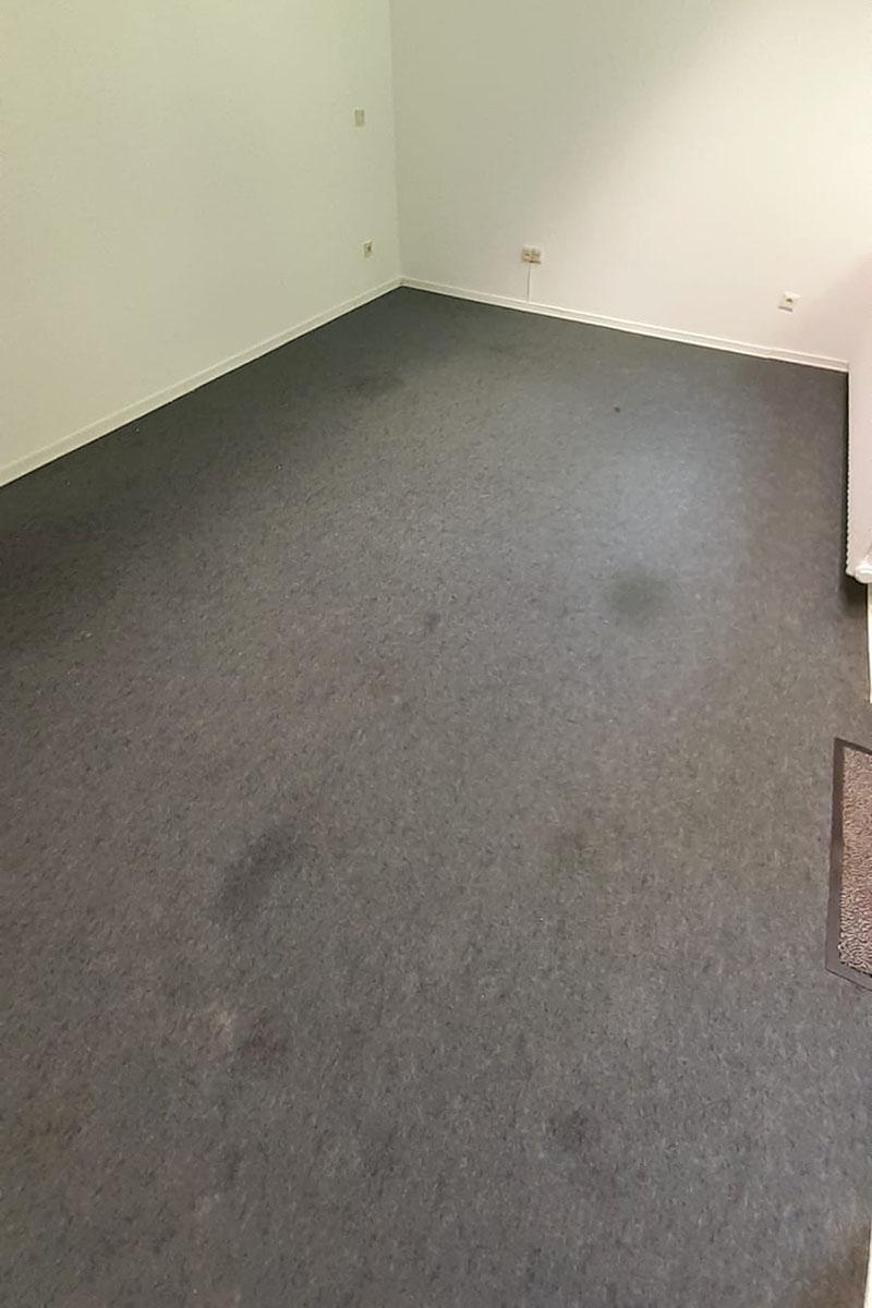 Teppichreinigung - vorher