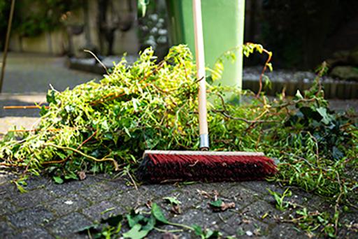 Grünanlagenreinigung außen